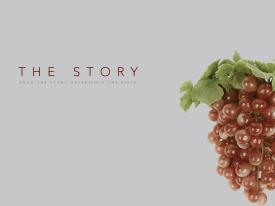H-Icon_Ch06_Grapes